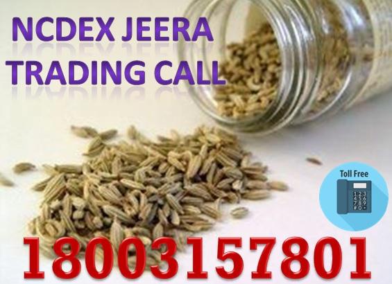 NCDEX Jeera